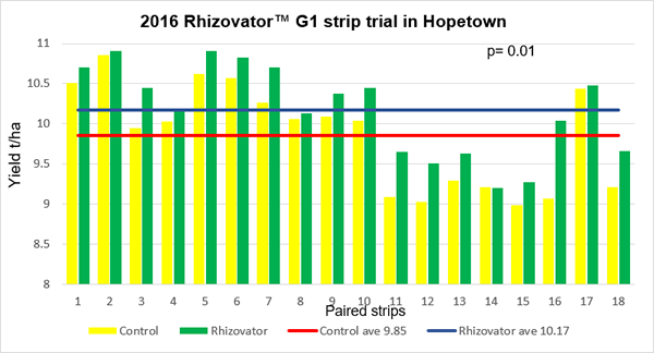 Figure 9. Yields obtained in the Rhizovator™ wheat strip trial at Hopetown.