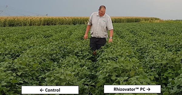 Figure 4. Effect of Rhizovator™ PC on soybean growth near Leslie, Mpumalanga