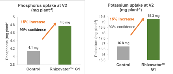 Figure 2. Effect of Rhizovator™ G1 on various measures of maize growth near Ficksburg, Eastern Free State