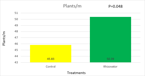 Figure 5: Plant population of Rhizovator™ treated plants versus the control