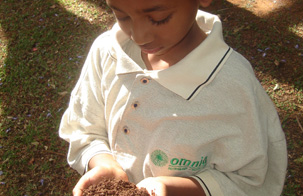 Fertilizer facts for kids [photo]