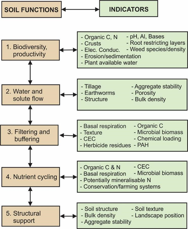 Graphic representation of the five essential soil functions and associated soil health indicators