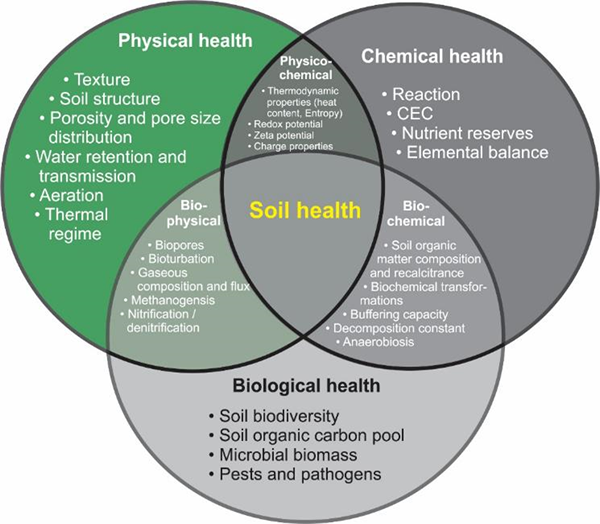 Components of soil health