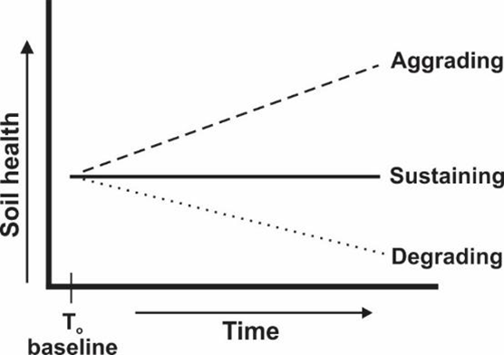 Figure 3: Possible temporal trends in dynamic soil health assessments